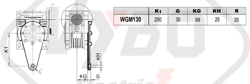 torzné rameno prevodovka wgm130